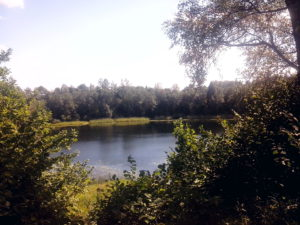 Озеро под Псковом