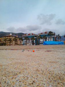 Пляжный натюрморт