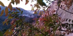 Долина реки Чёрная